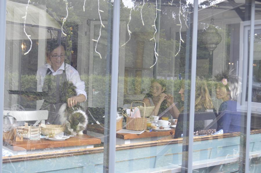 katzencafe berlin