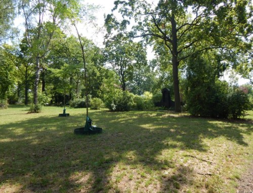 Bäume, Schmetterlinge und Oskar Ziethen